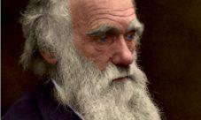 ¿Quién es el autor de la teoría evolucionista?