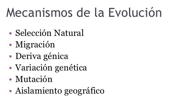 ¿Cuáles son los mecanismos de la evolución?