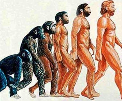 ¿Qué es el origen de la especie?