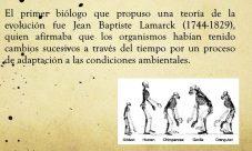 ¿Cuál es la teoría de la evolución de Lamarck?