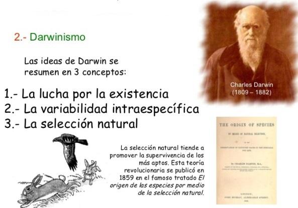 ¿Cuáles son las teorías evolutivas?